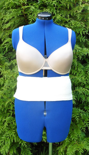 Front Bra & Padding added to Form